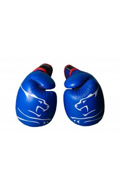 Боксерские перчатки PowerPlay 3018 Синие