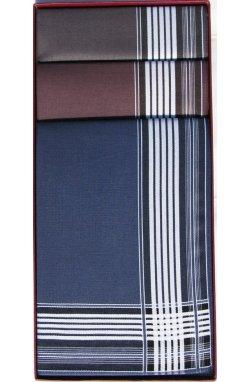 Комплект мужских носовых платков Guasch 104.96 D.16