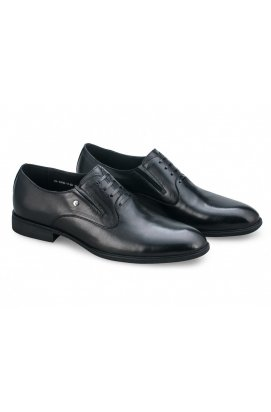 Туфли мужские Clemento 7181334 цвет черный