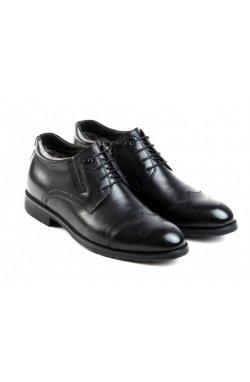 Ботинки Carlo Delari 7164122 цвет черный