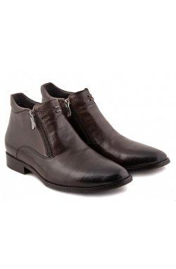 Ботинки Carlo Delari 7154063-Б цвет коричневый