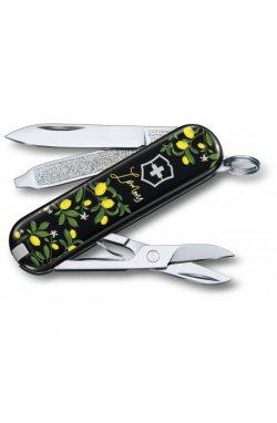Складной нож Victorinox CLASSIC LE 0.6223.L1905