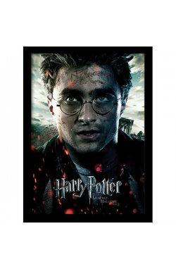 Постер в раме Harry Potter / Гарри Поттер (Deathly Hallows Part 2 - Harry) - wos6075
