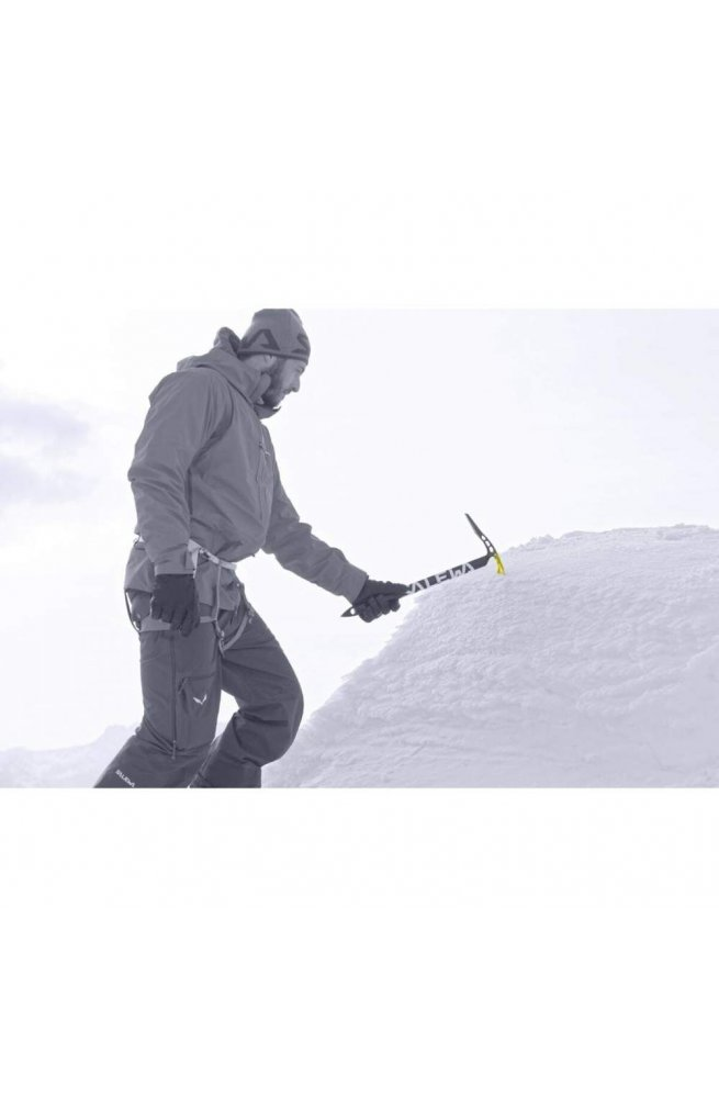 Ледоруб Salewa ALPINE-X ICE AXE 1754 3990 - 65 см - синий (013.003.0985)