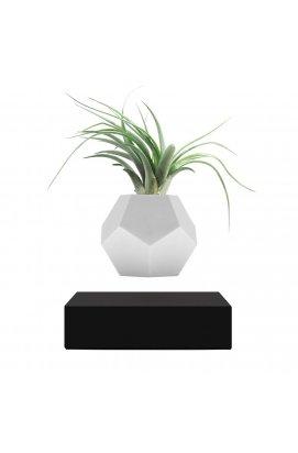 Левитирующий вазон «FLYTE Planter», черный - wos9163