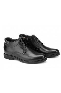 Ботинки мужские Carlo Delari 7214040 цвет черный, кожа
